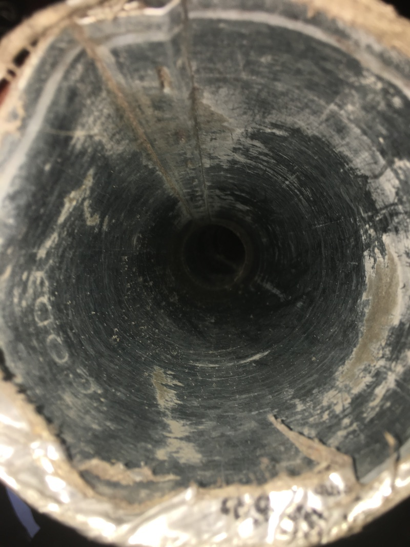 Dirty dryer vent