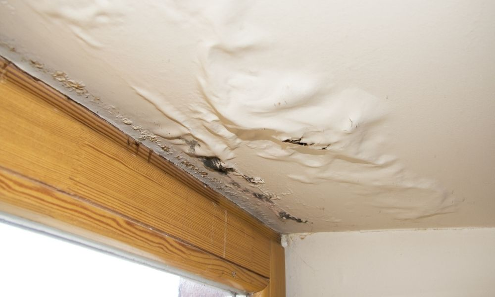 How Fast Can Water Damage Ruin Your Home